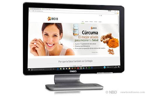 Diseño de tiendas virtuales en Puebla