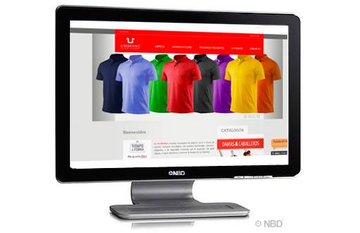 Diseño de Paginas web en Puebla